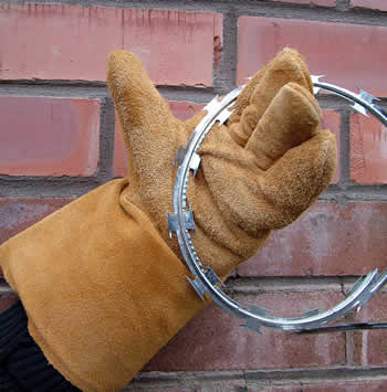 Perfect Razor Wire Gloves Pictures - Electrical Diagram Ideas ...